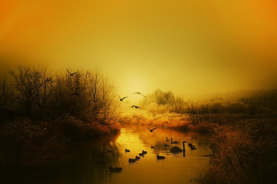 Gold aura